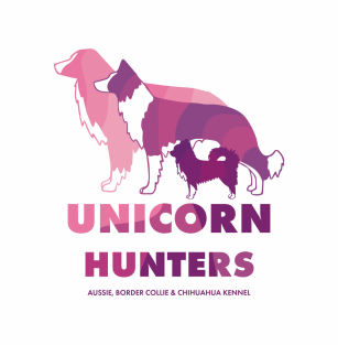 Unicorn Hunters