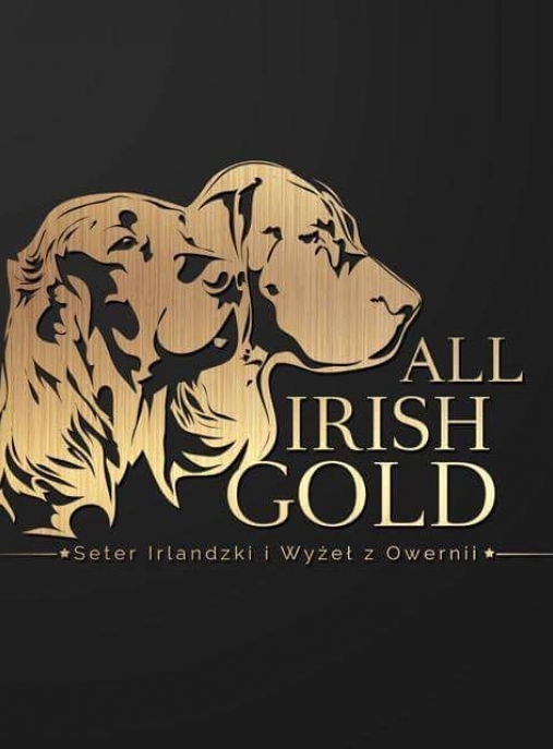All Irish Gold