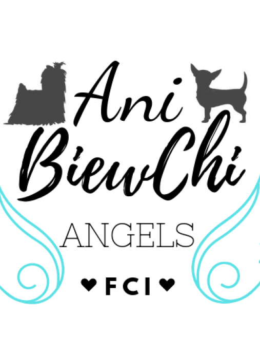 Ani BiewChi Angels