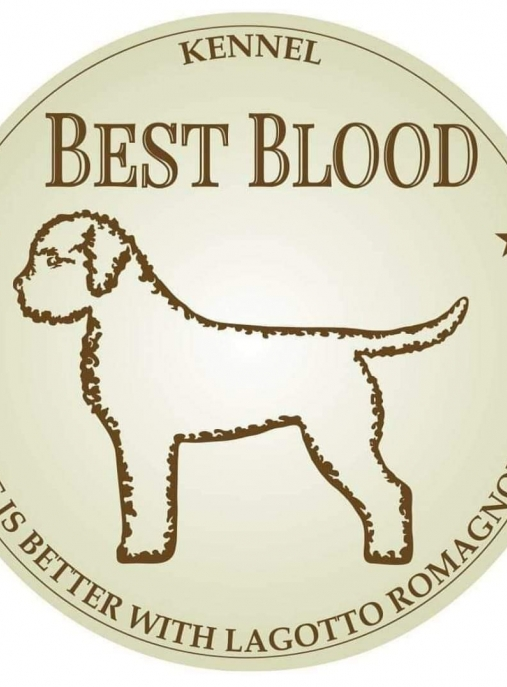 Best Blood