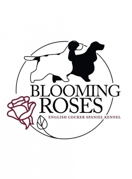 Blooming Roses FCI
