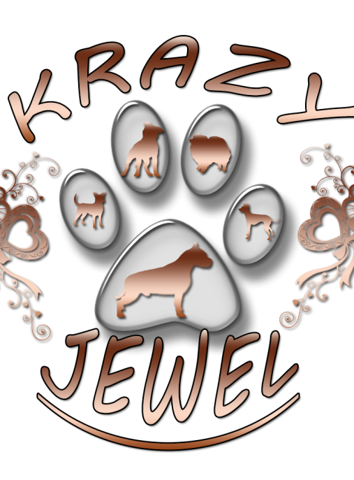 CRAZY JEWEL