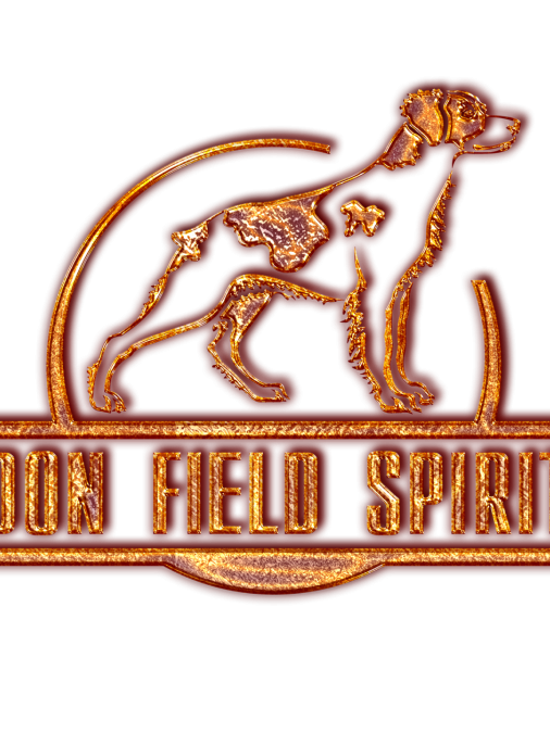 DON FIELD SPIRIT