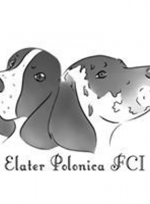 Elater Polonica FCI
