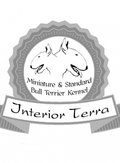 Interrior Terra FCI