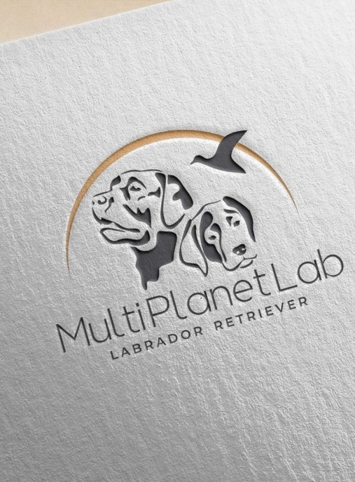 Multi Planet Lab FCI