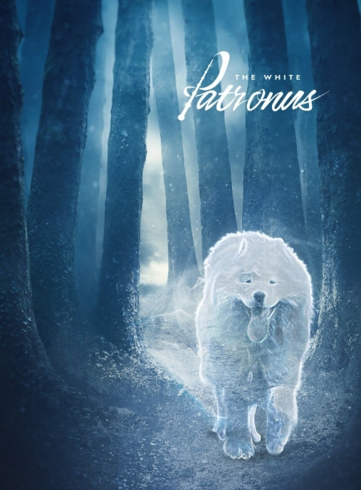The White Patronus